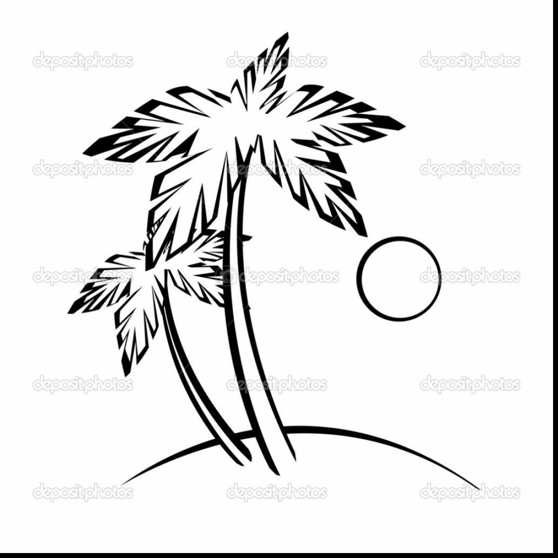 1126x1126 Palm Tree Drawing Outline Astounding Palm Tree Beach Outline