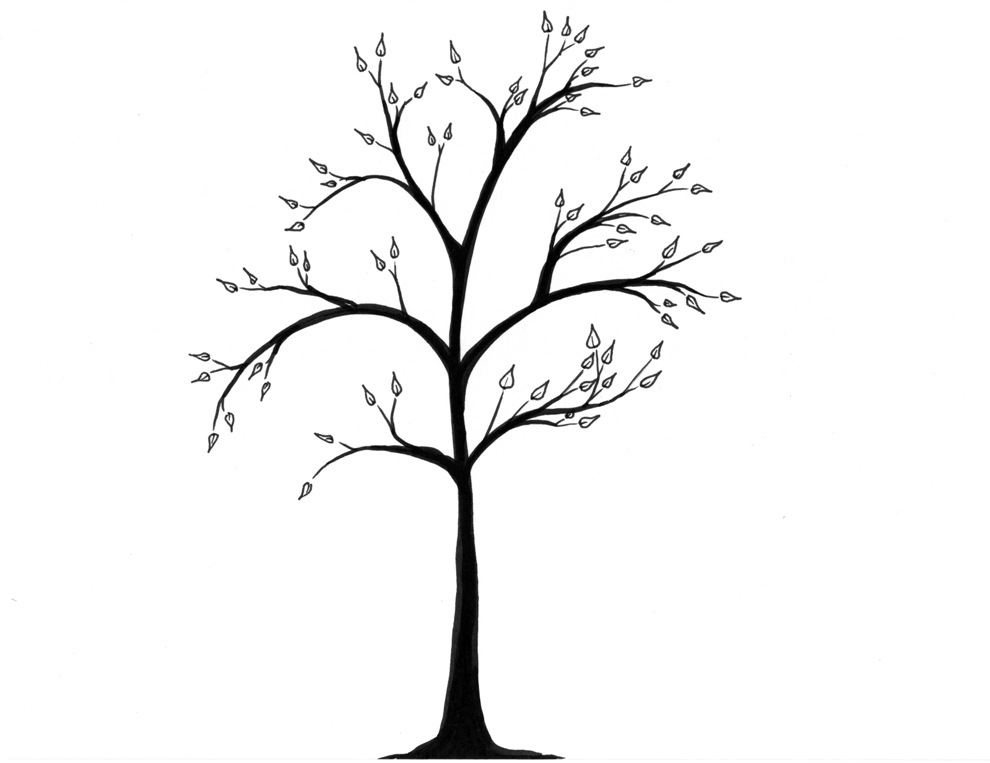 990x763 Pictures Tree Drawing Simple,