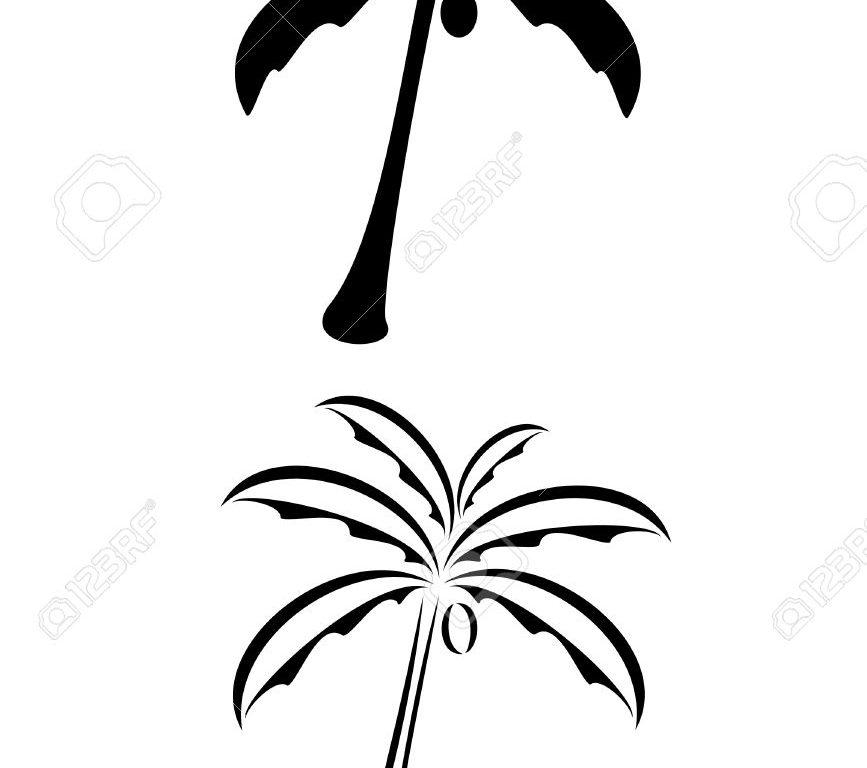 867x768 Download Simple Palm Tree Tattoo