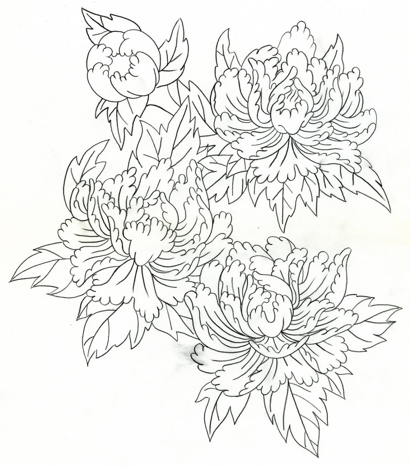 1320x1500 Amazing Peony Outline Tattoos