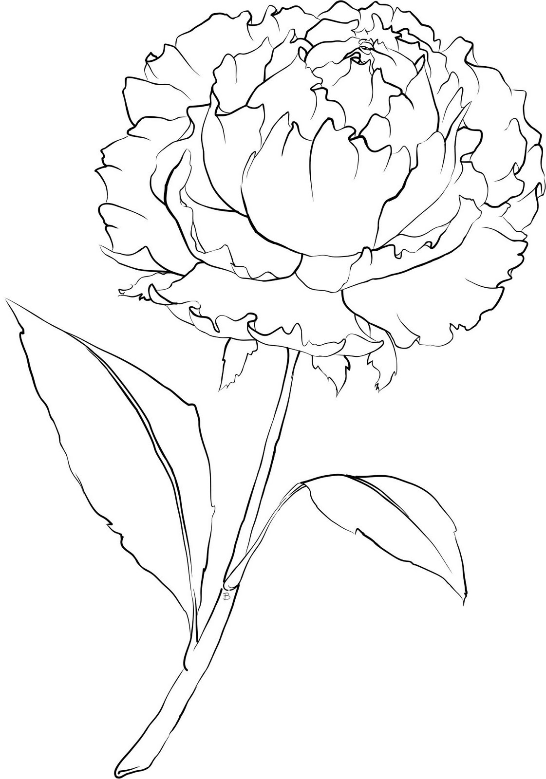 1121x1600 Beccy's Place Peony Flower Templatestencil Coloring Page. Art