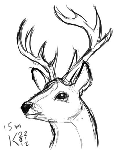 400x517 Drawn Buck Simple