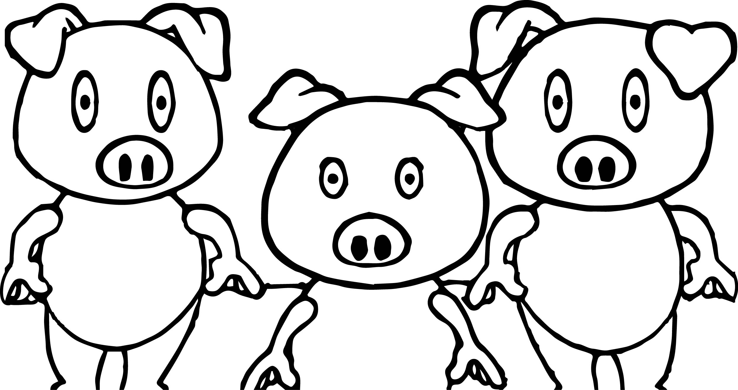 Simple Pig Drawing