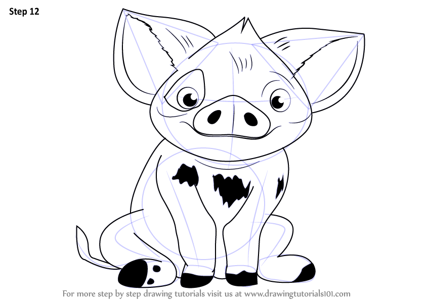 844x598 Learn How To Draw Pua From Moana (Moana) Step By Step Drawing