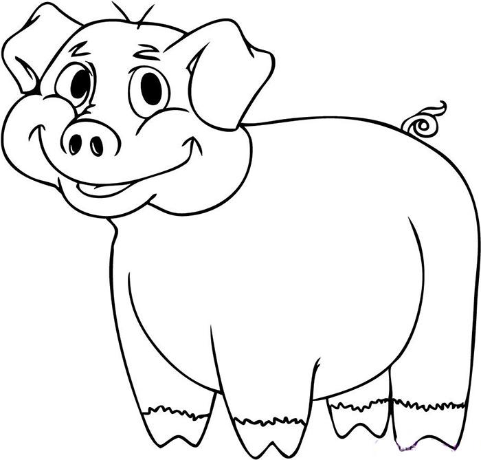 700x669 Pig Template