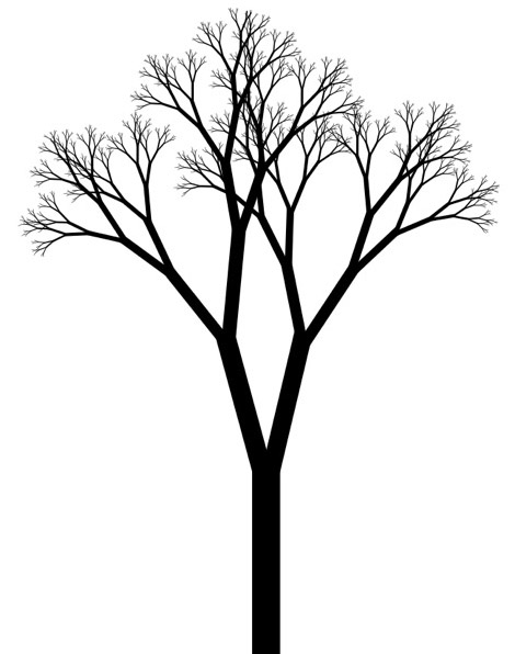 470x596 Black And White Tree Drawing