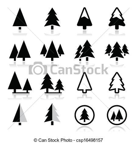 450x470 Pine Tree Images Pine Tree