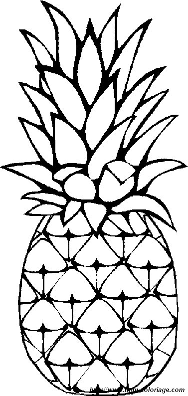 Simple Pineapple Drawing at GetDrawings.com | Free for personal use ...