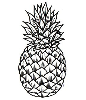 simple pineapple drawing at getdrawings free