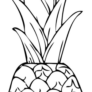 300x300 Fresh Fruit Punch Pineapple Coloring Page Fresh Fruit Punch