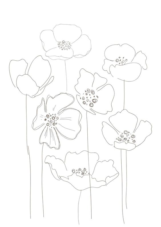 Simple poppy drawing at getdrawings free for personal use 564x797 poppies art ideas draw doodles and watercolor mightylinksfo