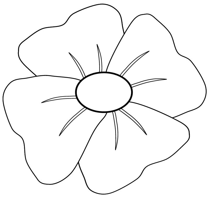 827x767 Poppy Flower Clipart Black And White