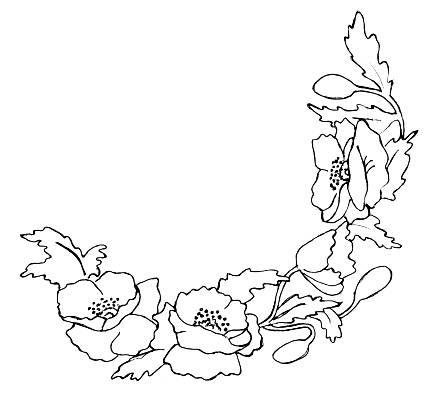 Simple poppy drawing at getdrawings free for personal use 437x401 porcelain painters online lessons mightylinksfo