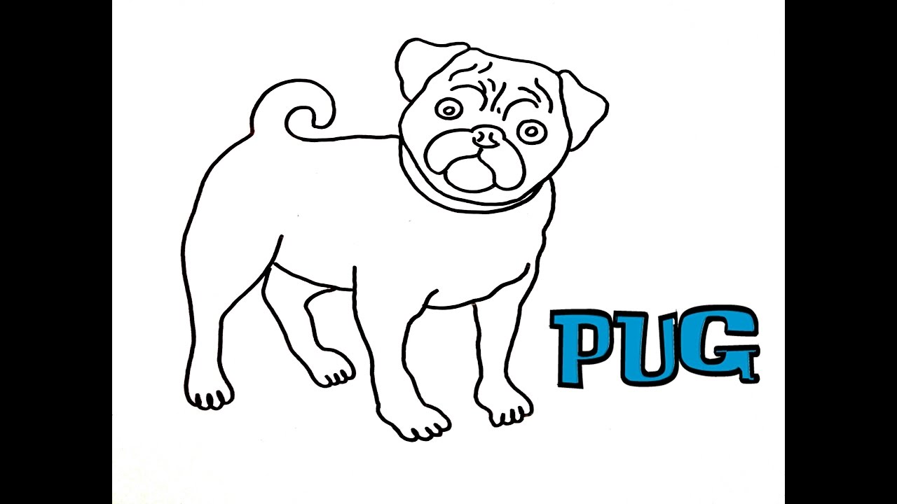 1280x720 How To Draw Your Pug It's Easy And Funny