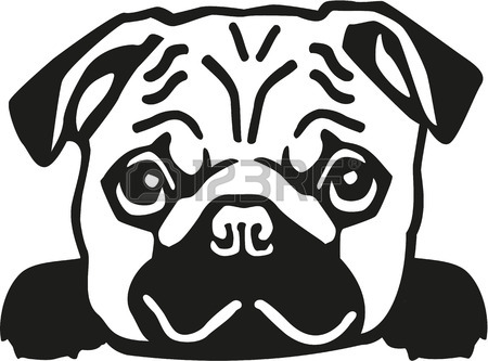 450x333 4,858 Pug Stock Vector Illustration And Royalty Free Pug Clipart