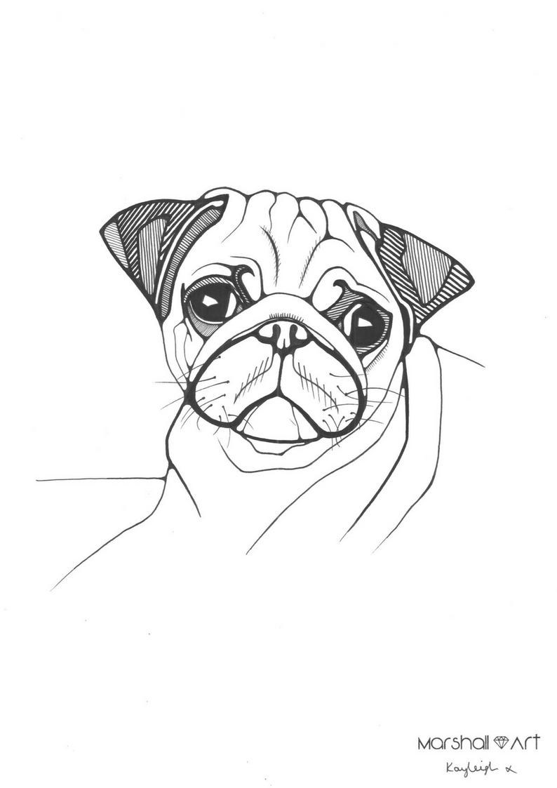 794x1123 Simple And Cute Pug Dog Animal Illustration By London Artist