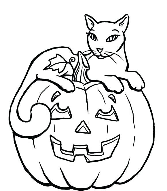 580x664 Halloween Cat Coloring Cat Witch Sitting On A Pumpkin Vector By