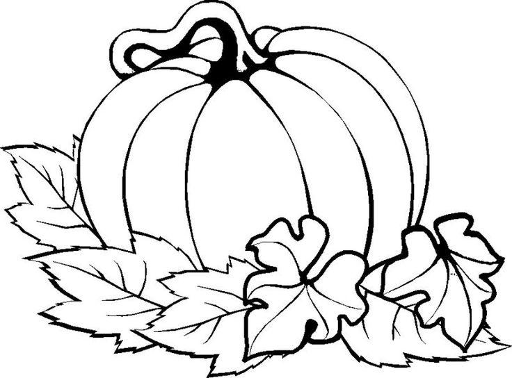 736x544 Pumpkin Pictures To Color 4 Jackolantern Coloring Page 25 Unique