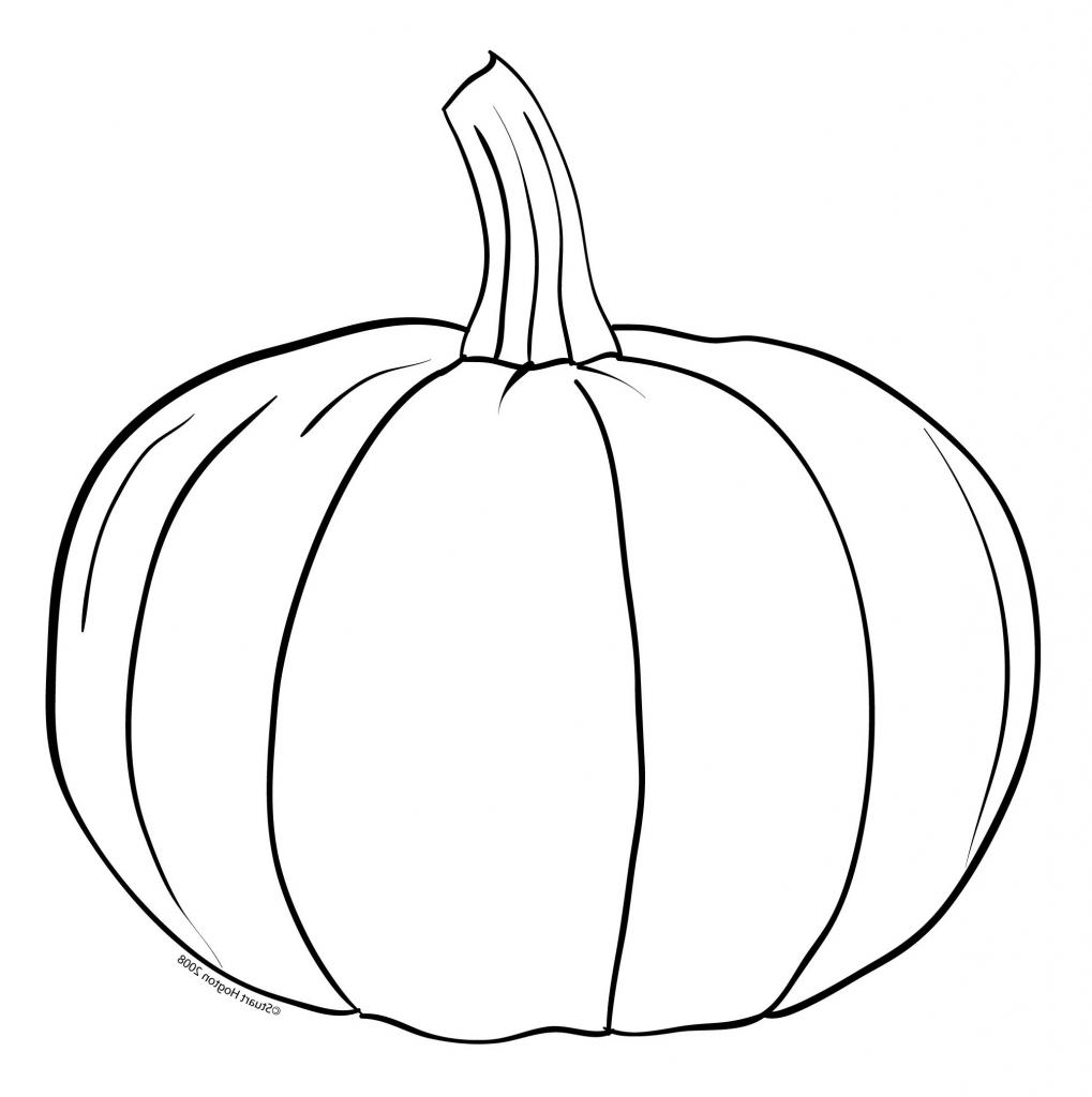 1019x1024 Drawing Of A Pumpkin