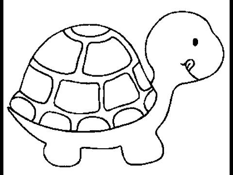 480x360 Drawing A Sea Turtle How To Draw Easy Things