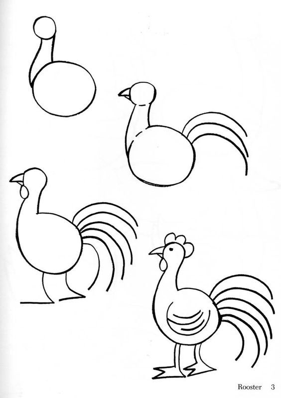 Simple Rooster Drawing