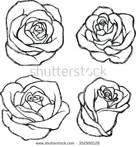 435x470 Drawn Rose Simple Rose Drawing Pencil Drawn Rose Flower Affan