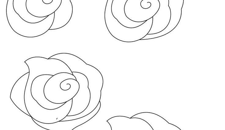 736x425 How To Draw A Simple Rose Drawn Rose Step Step Pencil And In Color