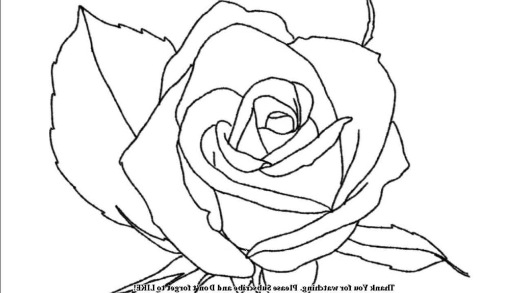 1024x576 Simple Rose Drawings