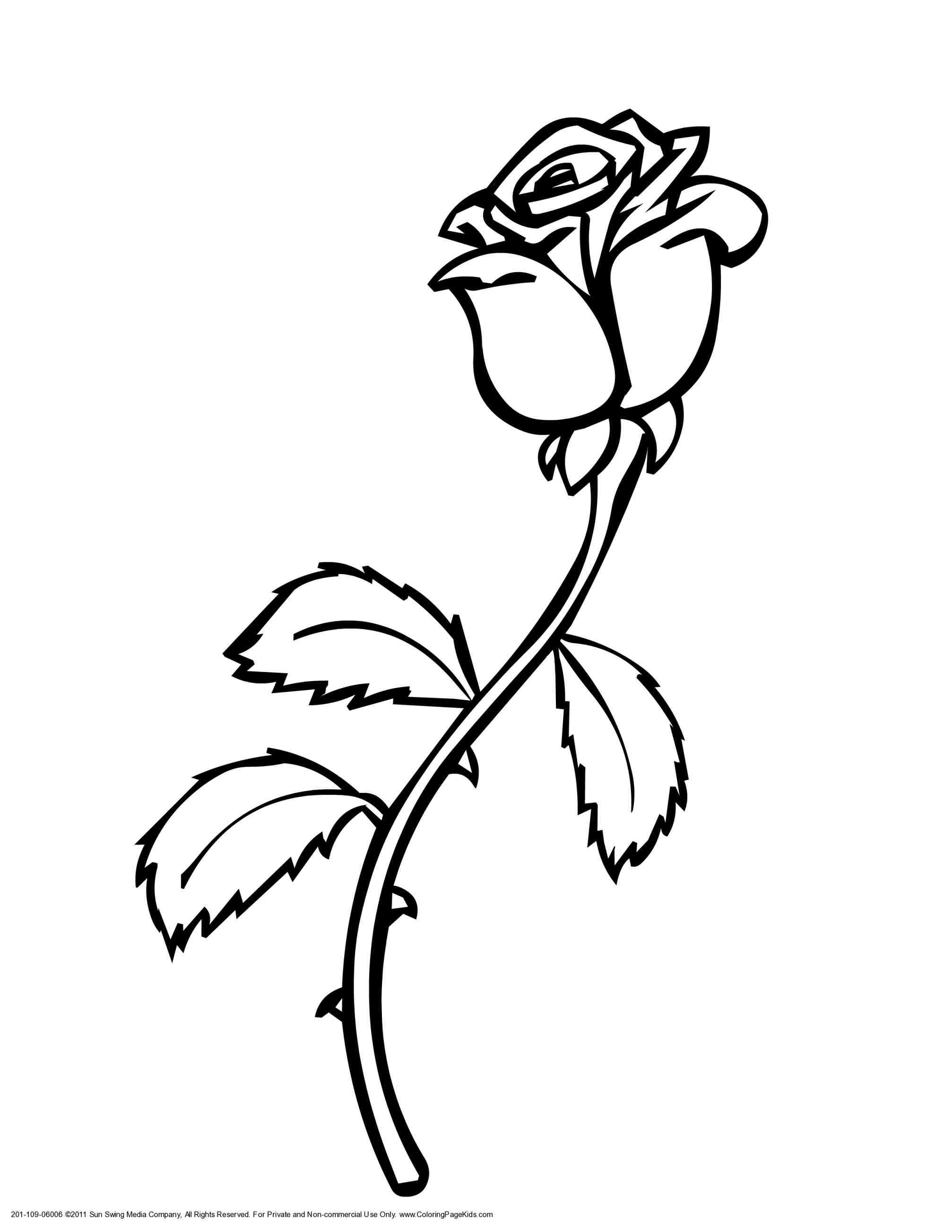 2014x2607 Drawing Roses For Kids