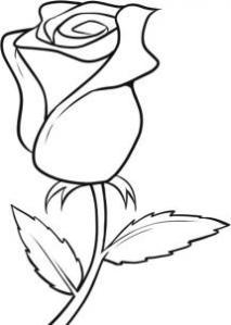 213x299 Easy Flower To Draw