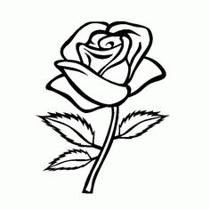 236x236 Love Roses Drawings Step By Step Hd Background 9 Hd Wallpapers
