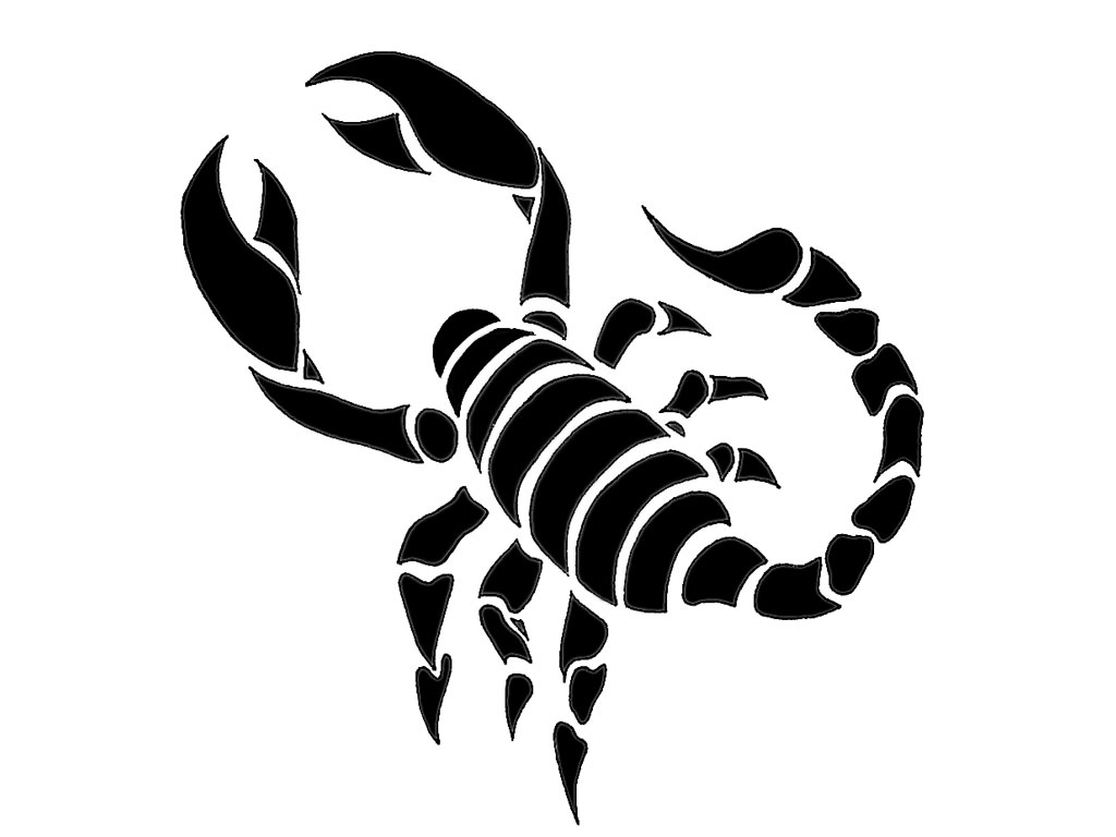 1024x768 Index Of Wp Contentgallerycategory Scorpion Tattoos