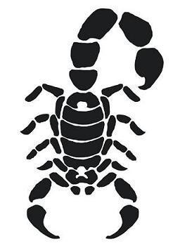 273x346 Interesting Designed Simple Black Ink Scorpion Tattoo