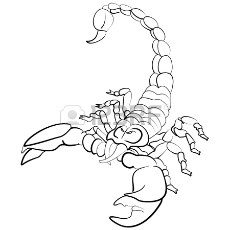 450x450 Scorpion Tribal Images Amp Stock Pictures. Royalty Free Scorpion