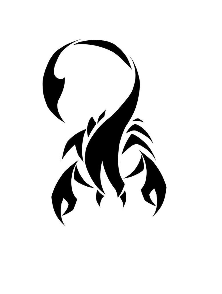 777x1027 Scorpion Tattoo Desighn By Shekony