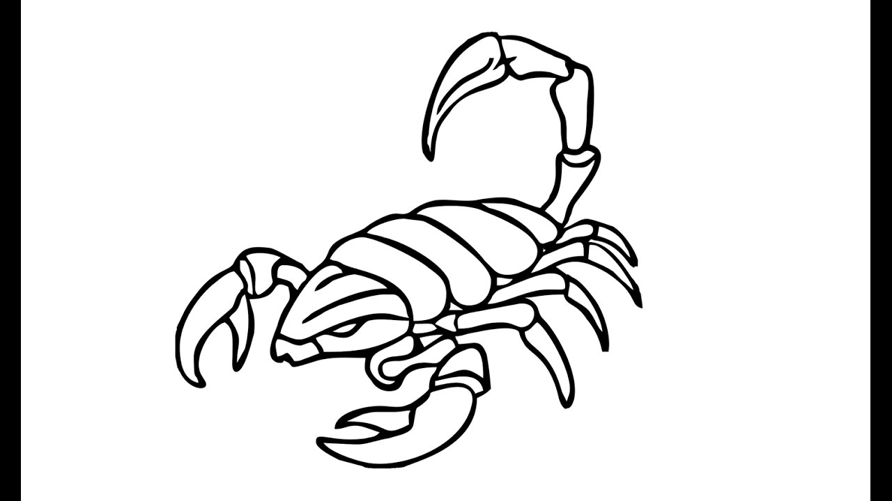 1280x720 How To Draw A Scorpion (Animals)