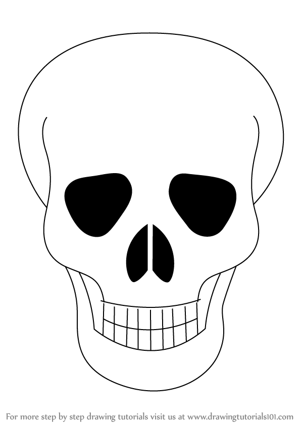 598x844 Skull Drawing Step By Step