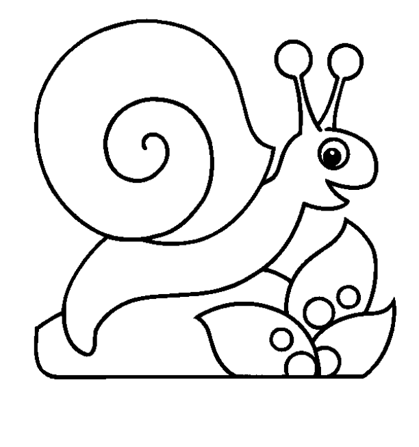Simple snail drawing at free for for Simple snail drawing