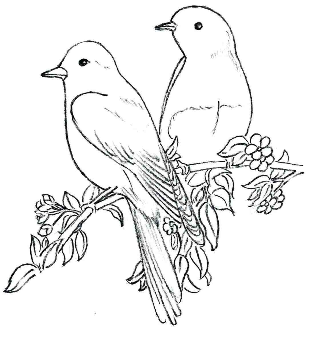 1106x1179 By Easy With Pictures Drawing Clip Art Bird Outline Drawings