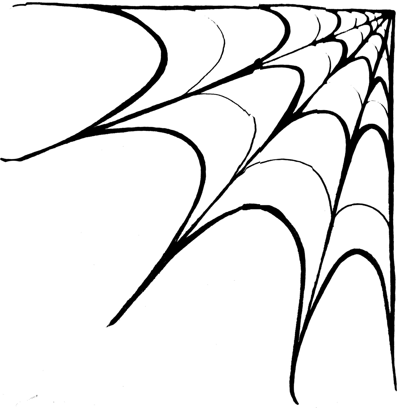 1360x1380 Drawing Of A Spider Web How To Draw A Simple Spider Web