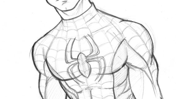 570x320 A Drawing Of Spiderman How To Draw Spider Man In Fine Art Style