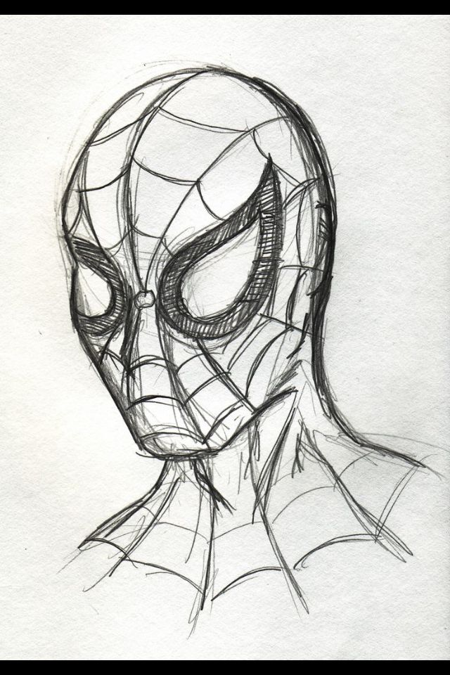 640x960 Rough Spider Man Sketch Ideas Spider Man, Spider