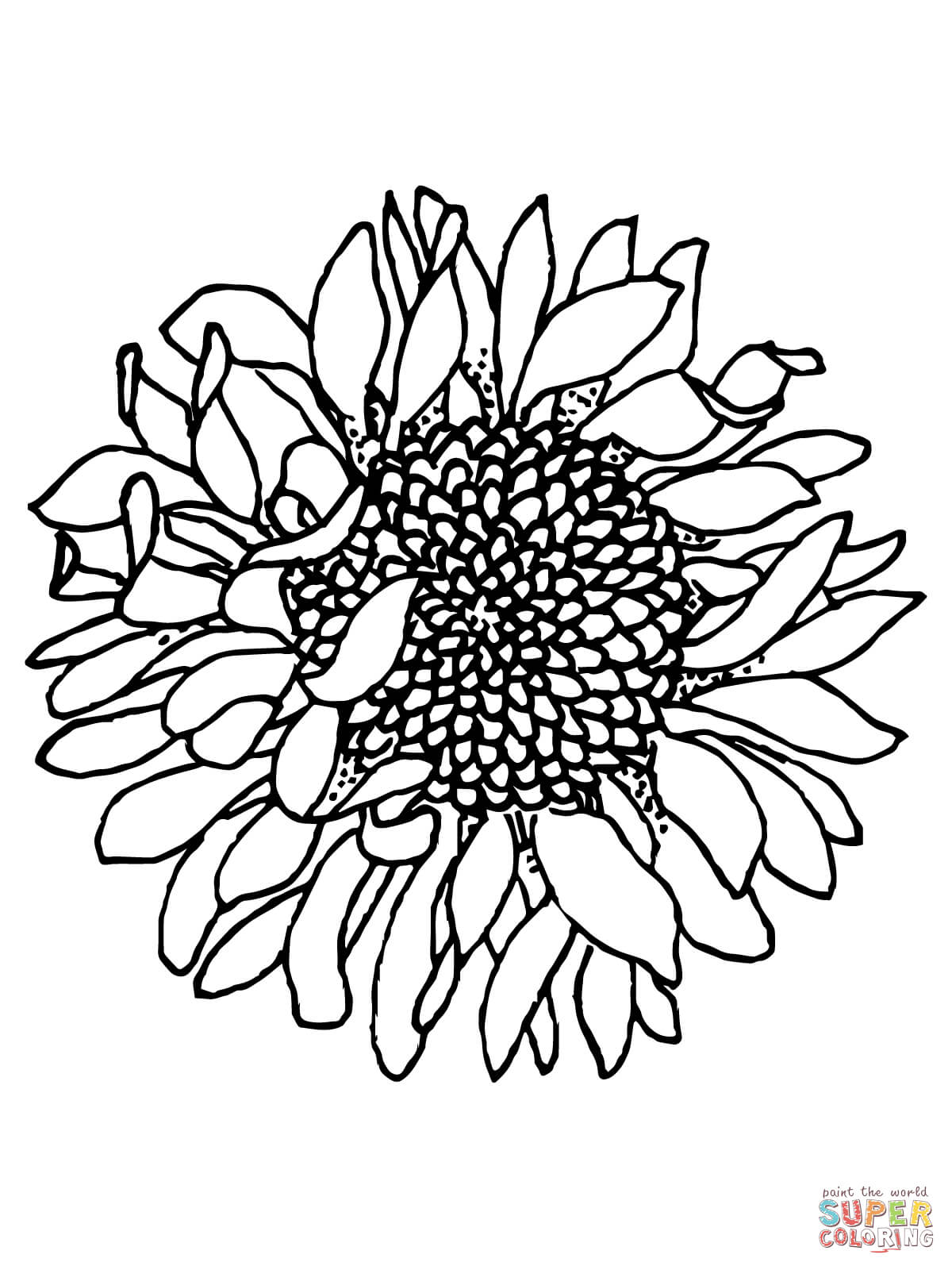 1200x1600 Head Of Sunflower Coloring Page Free Printable Coloring Pages