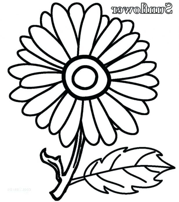 618x696 Simple Sunflower Coloring Page