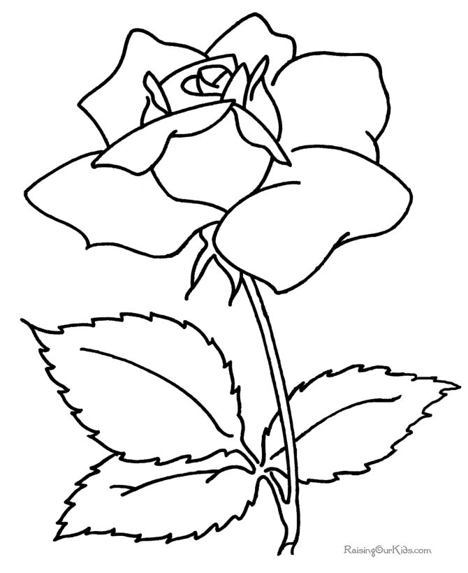 670x820 Coloring Pages Breathtaking Coloring Pages Draw Easy Flowers