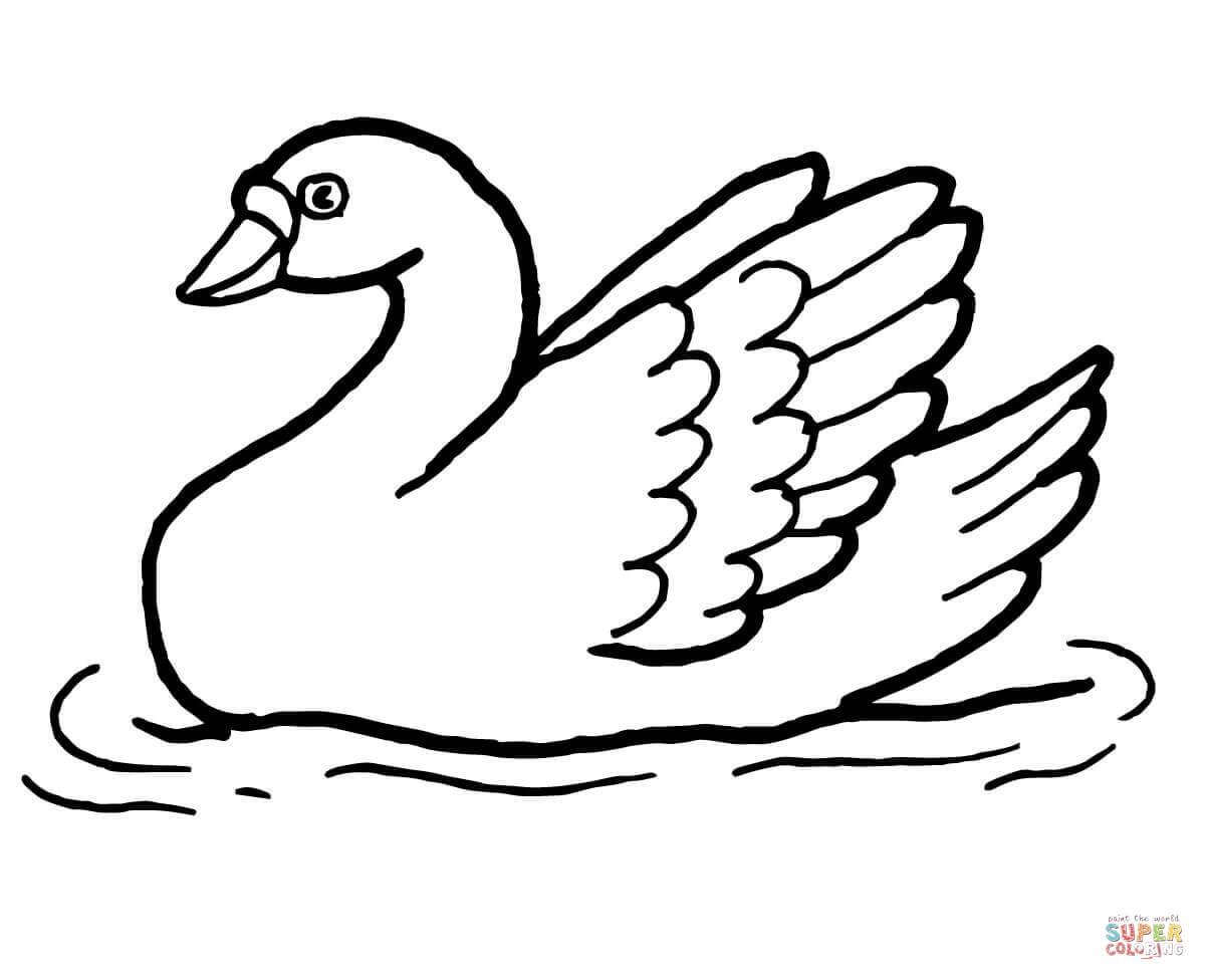 Simple Swan Drawing at GetDrawings