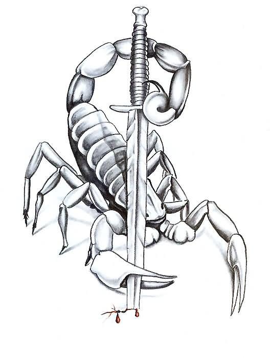 530x700 Scorpion With Sword Tattoo Design