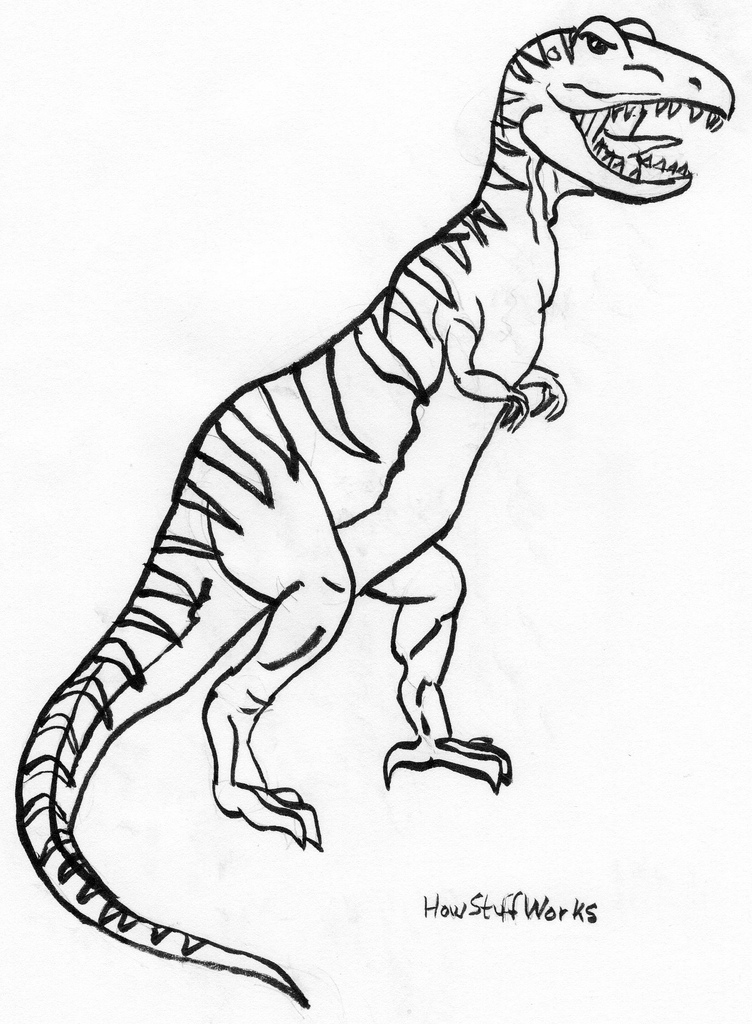 752x1024 T Rex Using Howstuffworks Hoping To Improve My Drawing
