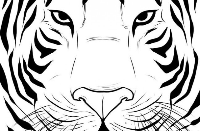 Simple Line Drawings Of Animals : Simple tiger face drawing at getdrawings free for personal
