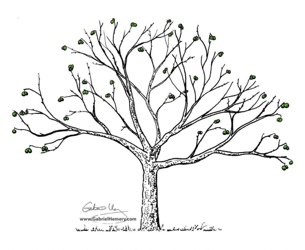 1024x842 Simple Tree Drawing